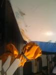 Etrave du canot breton en cours réfection